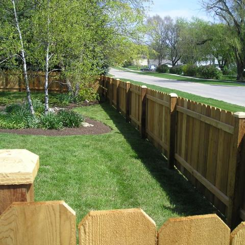 Natural Cedar Fences